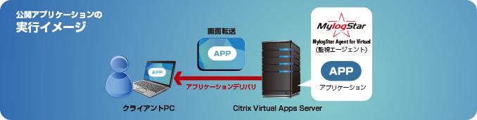 公開アプリケーションの実行イメージ